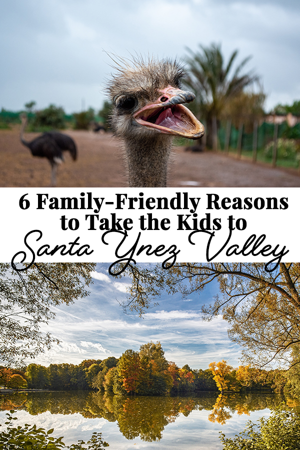 From farms to fairytales, the Santa Ynez Valley Wine Country is a family-friendly destination that parents and kids can agree on.
