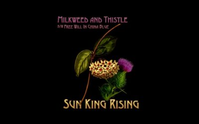 PeacockSunrise Records Releases A Two-song Extended Play Single by Sun King Rising.
