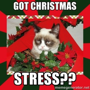 Hope for the Holidays Not Christmas Stress