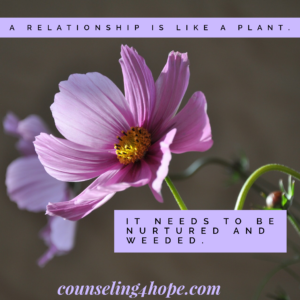 Marriage are like plants