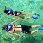 snorkeling and scalloping