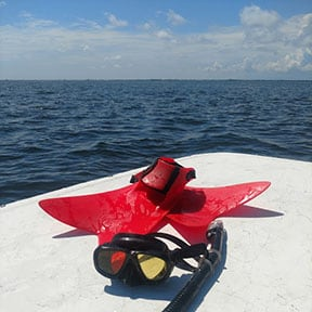 scalloping fins snorkel