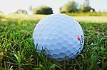 PGA Tour plans possible resumption/British Open canceled