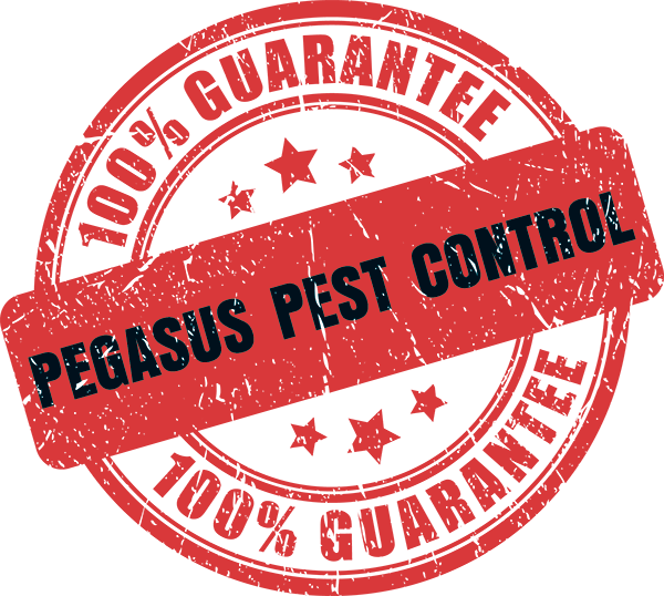 Special Offers, The Pegasus Pest Control Guarantee