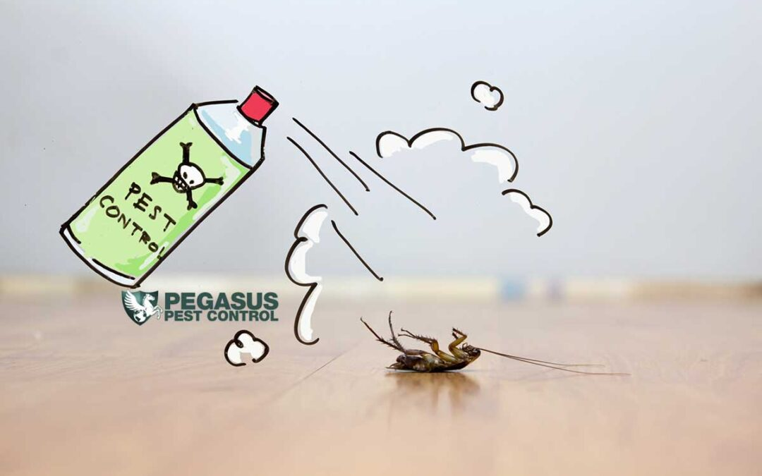 Use These 7 Effective Methods to Increase Your Chances of Success in Controlling Pests