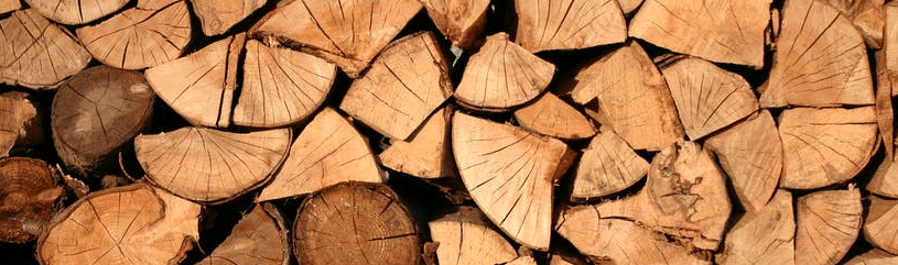 The 7 Firewood Pests You Need To Look Out For (Watch Out For #6 It's Poisonous) Firewood Pests in Elk Grove, Sacramento, & Roseville