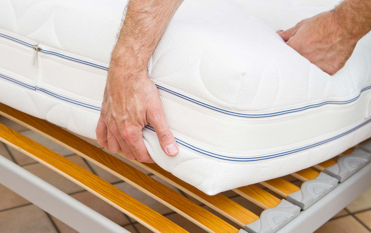 What to Do If You Have Bed Bugs