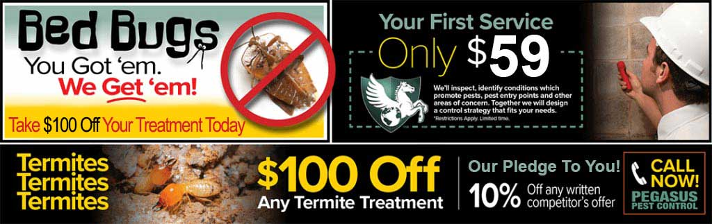 Pegasus Pest Control - Sacramento Pest Control Company, Northern California, Sacramento Exterminators