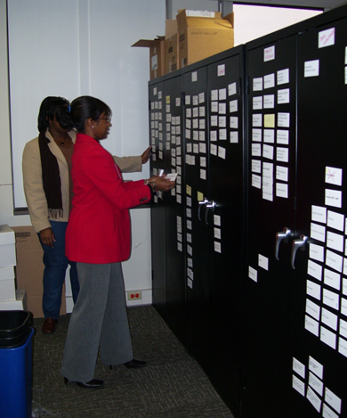 Picture of me leading an exercise to match electronic file types to department categories at a governmental agency. Photo courtesy Equilibria, Inc. Copyright 2008.