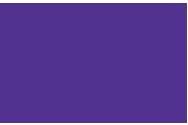 Bellevue Public Schools Foundation logo