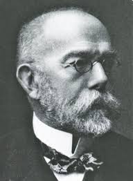 Robert Koch was an important person in the history of Tuberculosis