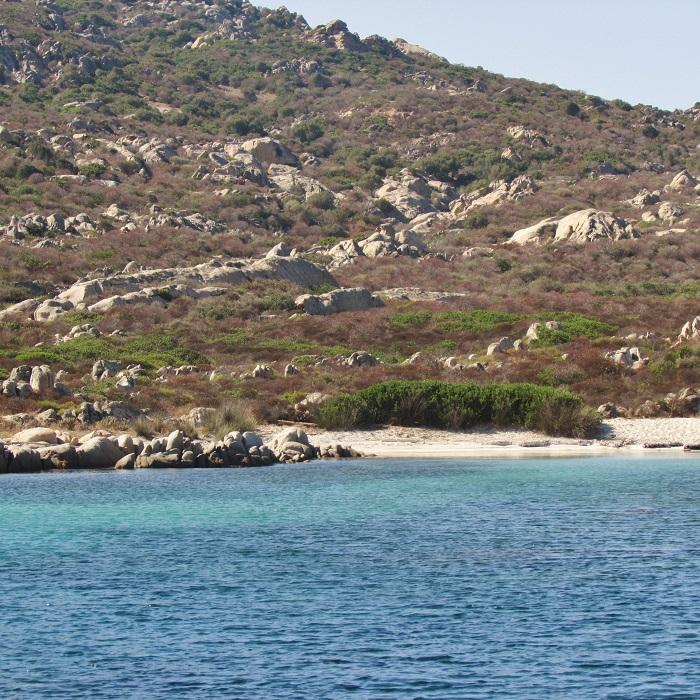 isola di asinari