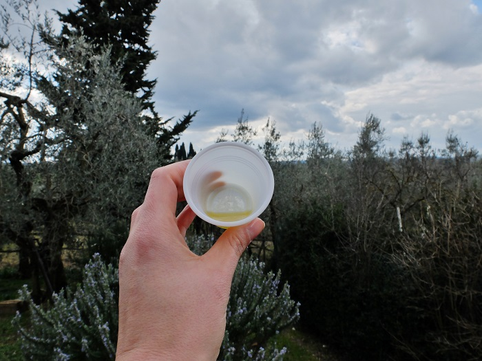 olive oil with a view