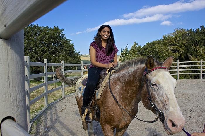 Horse riding in Le Marche