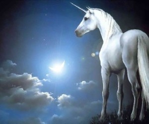 Celestial-Unicorn