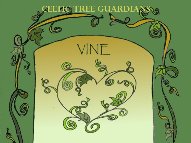 Celtic Tree Guardian – Vine