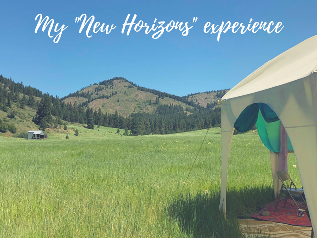 "My ""new horizons"" experience at the Fairy Congress"