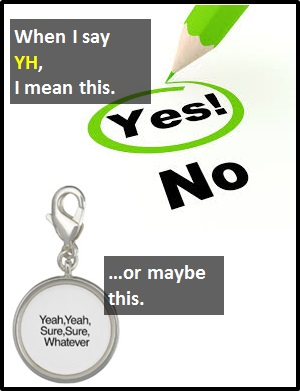 """The abbreviation YH means """"Yeah"""" or """"yahoo."""""""