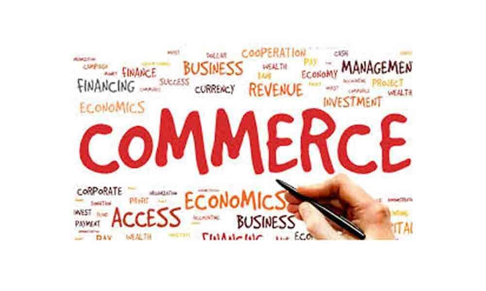What are the subjects in commerce?
