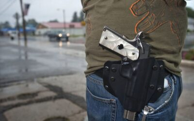 Michigan House bill would decrease punishment for lapsed concealed pistol licenses