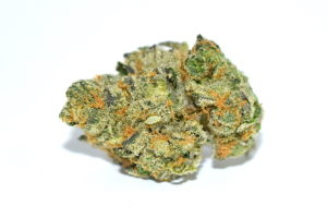 Girl Scout Cookies (Indica-dominant hybrid)