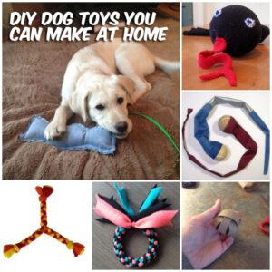diy-dog-toys-homemade