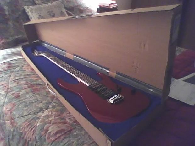 DIY Guitar Case