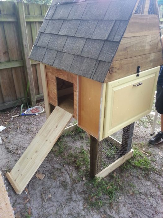 How to Build a Chicken Coop for Less Than 50