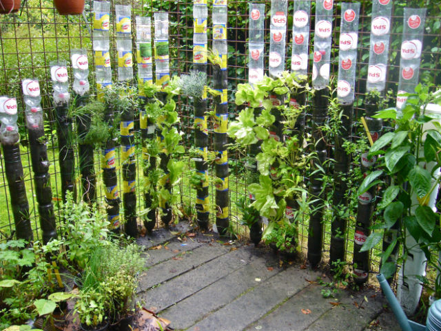 Bottle Tower Gardening How to Start