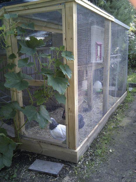 Chicken Coop Cage Run