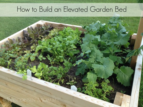 How to Build an Elevated Garden Bed