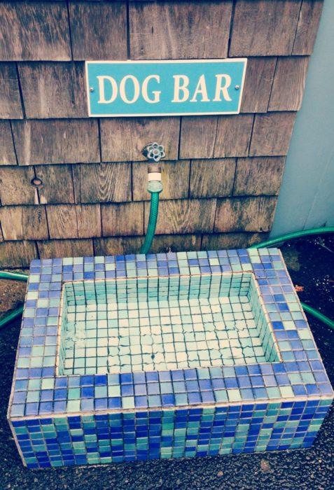 Mosaic Tile Dog Bar