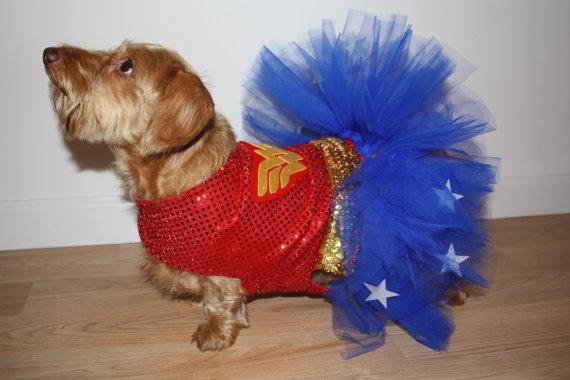 Dachshund Superhero Costume