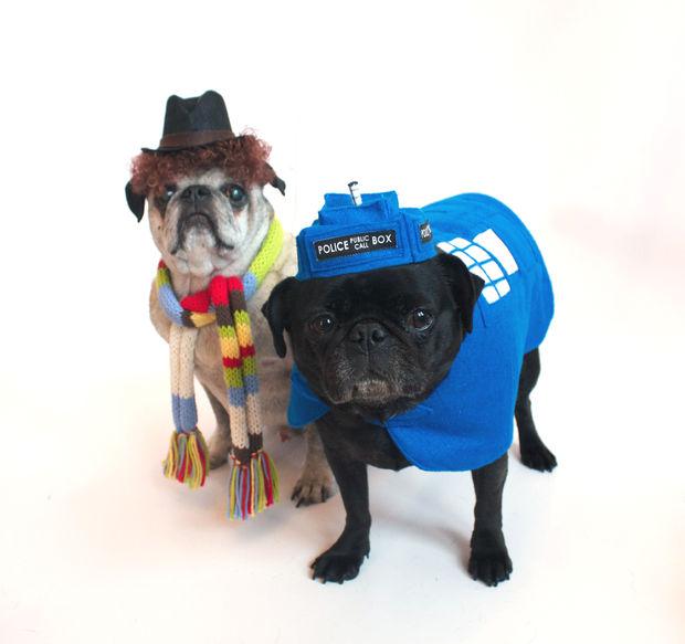 Dr Who and Tardis Halloween Pet Costume
