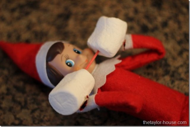 elf-on-the-shelf-lifting-weights