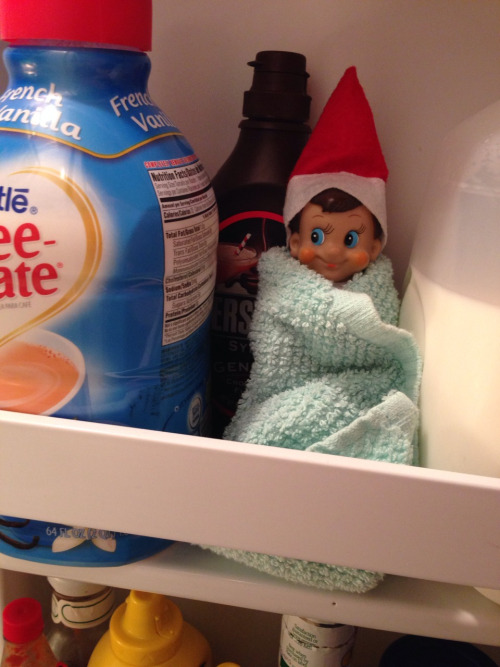 staying-toasty-in-the-fridge
