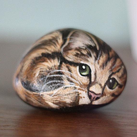 tiger-cat-rock
