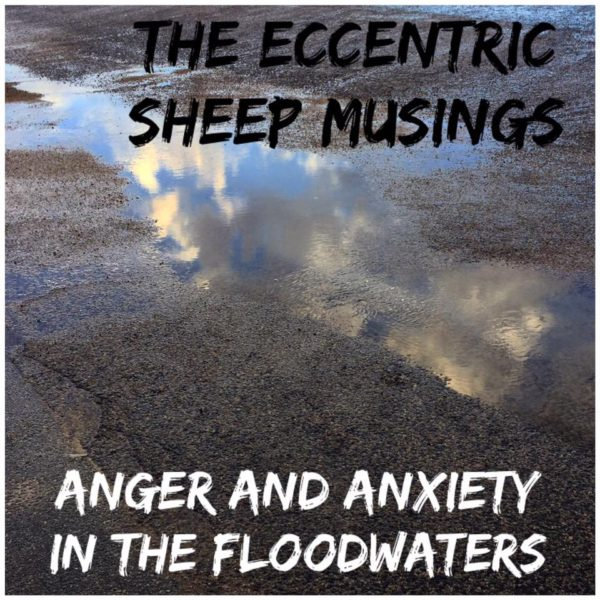 Anxiety jesuswired_eccentric sheep flood anxiety