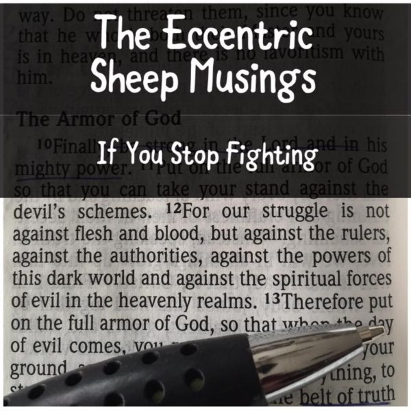 The Eccentric Sheep Musings: If You Stop Fighting