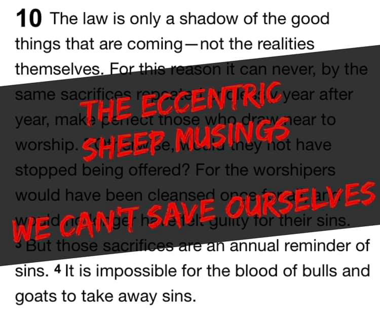 The Eccentric Sheep Musings: We Can't Save Ourselves
