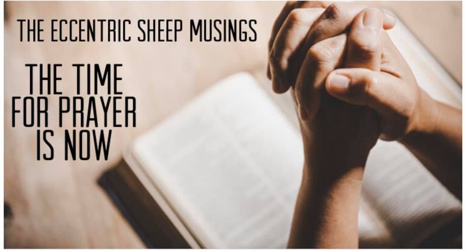 The Eccentric Sheep Musings: The Time For Prayer is NOW