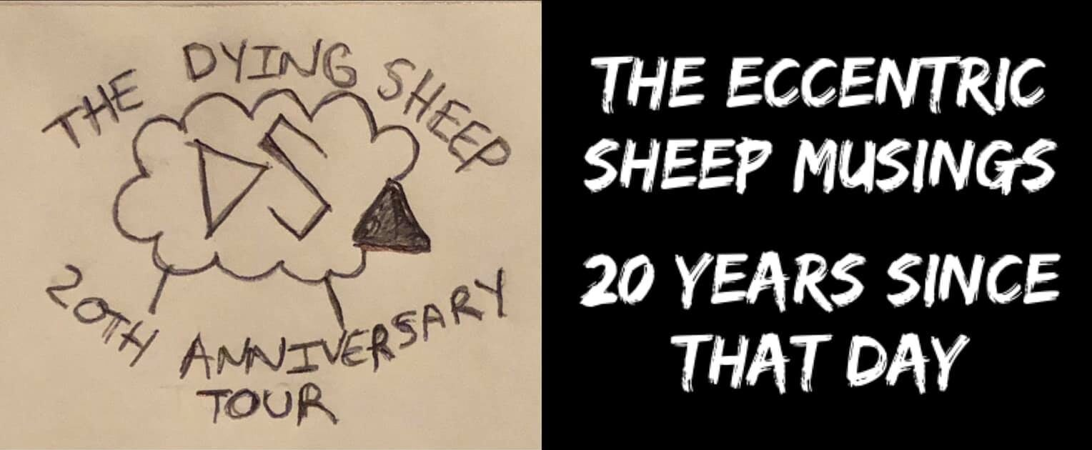 The Eccentric Sheep Musings: 20 Years Since That Day
