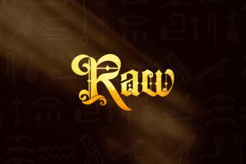 New Release: Paul Payne837 & Dmstry - Raw