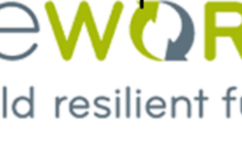 Photo of Applications Open For The OneWorld Research Internship 2020