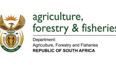 Photo of Applications Open For The Dept of Fisheries: Bursary Programme 2021