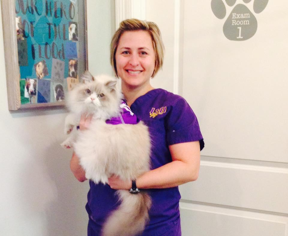 Dr. Beth Audibert Practice Owner, Veterinarian at Three Rivers Animal Hospital