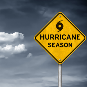 Hurricane Boarding Forms need to be filled out each year if your pet boards during hurricane season.