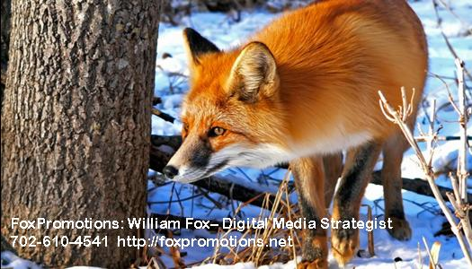 FoxPromotions Business Card #1