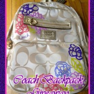 Vacation Coach Giveaway