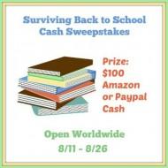 Surviving Back to School $100 Cash Giveaway